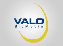 360_ref_220x161_logo_valo